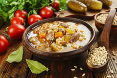 Rassolnik with chicken giblets Stock Images
