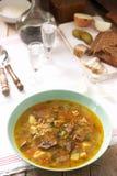 Rassolnik, sopa tradicional do russo, servida com vários petiscos e vodca Estilo rústico foto de stock
