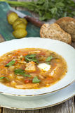 Rassolnik - traditional Russian soup. Royalty Free Stock Images