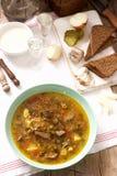 Rassolnik traditionell rysk soppa som tjänas som med olik mellanmål och vodka Lantlig stil royaltyfri foto