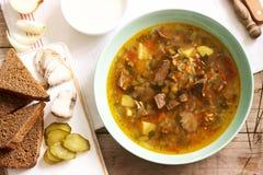 Rassolnik traditionell rysk soppa som tjänas som med olik mellanmål och vodka Lantlig stil royaltyfri bild