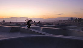 Rasta溜冰者 库存照片