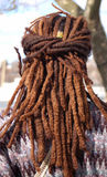 Rasta. Man combed in rasta style Royalty Free Stock Photography