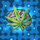 Rasta brain Stock Photography