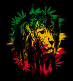 Rasta lion. Rasta theme with lion head on black background. Vector illustration Stock Photo