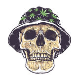 Rasta Skull in Hat. With cannabis symbols. Isolated on white. Vector art Stock Image