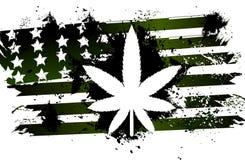 Rastafarian American flag green. With marijuana plant Royalty Free Stock Photography