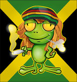 Rastafarian frog Royalty Free Stock Photography