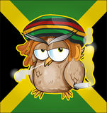 Rastafarian owl cartoon Royalty Free Stock Photography