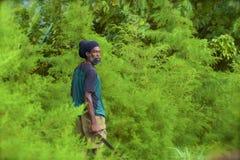 Rastaman in Antigua. People in Antigua - a man wearing rastaman hat, Caribbean royalty free stock photography