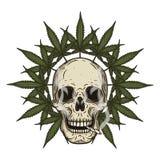Rastaman czaszka z marihuana liśćmi również zwrócić corel ilustracji wektora ilustracja wektor