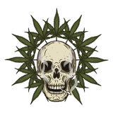 Rastaman skalle med cannabisblad också vektor för coreldrawillustration Royaltyfri Bild