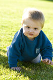 Rastejamento do bebê Imagens de Stock Royalty Free
