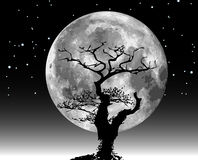 Raster moon illustration and tree. Silhouette Stock Image