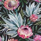 Raster tropical protea pattern Royalty Free Stock Photos