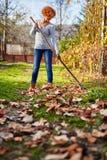 Rastrellamento di signora dell'agricoltore, pulizia il giardino Fotografie Stock