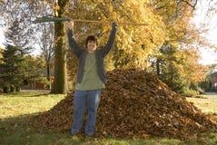 Rastrellatura del ragazzo trionfante delle foglie Fotografia Stock