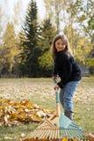 Rastrellatura delle foglie Fotografia Stock Libera da Diritti