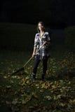 Rastrellatura delle foglie alla notte Fotografia Stock Libera da Diritti
