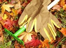 Rastrelli e guanti Fotografia Stock Libera da Diritti
