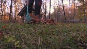Rastrelli le foglie stock footage