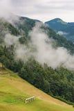 Rastrelliera per il fieno sulle nuvole nebbiose del anf della collina del pendio in foresta Immagine Stock Libera da Diritti