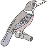Rastrerad exotisk fågel Vektor Illustrationer