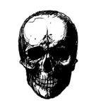 Rastrerad skalle vektor för bild för designelementillustration Inbjudan parti Mosaik perforering, grunge tecknad hand Royaltyfria Foton