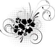 rastrerade hibiskusswirls för bakgrund Royaltyfri Bild