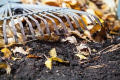 Rastrillo de acero de la fan que miente en la tierra del otoño Cerca de las hojas caidas Fotos de archivo libres de regalías