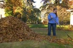 Rastrillo de la muchacha de las hojas al lado de la pila de la hoja Imagen de archivo libre de regalías