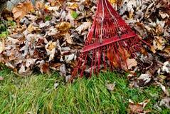 Rastrillo de las hojas Fotografía de archivo