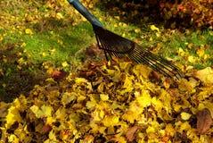 Rastrillo de las hojas fotografía de archivo libre de regalías