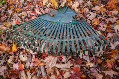 Rastrillo de las hojas Imagenes de archivo