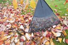 Rastrillo de las hojas de la caída en primer del jardín imágenes de archivo libres de regalías