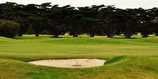 Rastrillo en arcón del golf Fotos de archivo