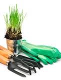 Rastrillo, pala, guantes de goma, pote de acero con la hierba verde Fotografía de archivo libre de regalías