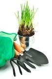 Rastrillo, pala, guantes, pote de acero con la hierba Foto de archivo