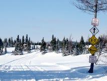 Rastro al aire libre del invierno Imagenes de archivo