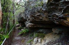 Rastro al lado de formaciones de roca Fotografía de archivo