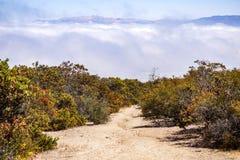 Rastro al pico de Simas en el parque de Toro, salinas, California fotografía de archivo