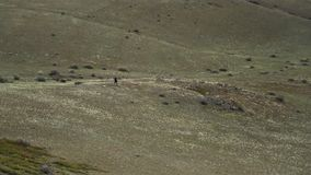 Rastro atlético solitario del hombre que corre en el valle El activar afuera Aptitud al aire libre almacen de video