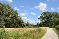 Rastro Biking de la trayectoria en el r?o Elba en Alemania Adultos jovenes fotos de archivo libres de regalías