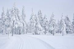 Rastro a campo través con un paisaje congelado en Noruega Foto de archivo
