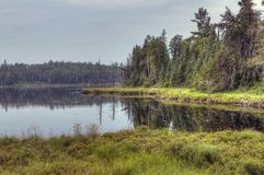 Rastro de Gunflint en el bosque del Estado superior, Minnesota fotos de archivo libres de regalías