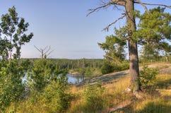 Rastro de Gunflint en el bosque del Estado superior, Minnesota imágenes de archivo libres de regalías