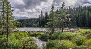Rastro de herradura del lago en el parque de Denali imagen de archivo