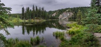 Rastro de herradura del lago en el parque de Denali foto de archivo
