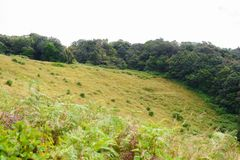 Rastro de Kew Mae Pan Nature Trail Trekking que lleva a través de selva Fotografía de archivo libre de regalías