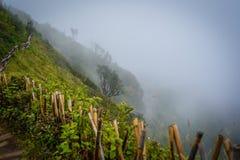 Rastro de Kew Mae Pan Nature Trail Trekking que lleva a través de selva Fotos de archivo